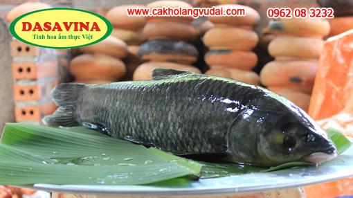Cá trắm đen nuôi ốc 3 năm nặng từ 3-5kg mới đạt tiêu chuẩn của DASAVINA